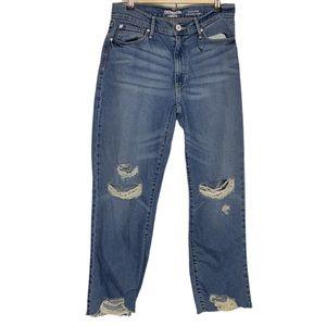 Denizen from Levi's High Rise Vintage Slim Jeans